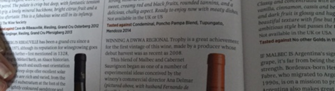Regional Trophy winner Argentinian Red Blend under £15 – Decanter